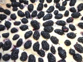 corn mulberry cake