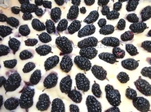corn-mulberry-cake