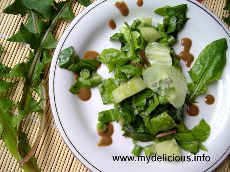 Dandelion green leaves salad