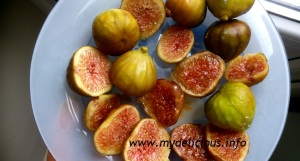 Dehydrating figs