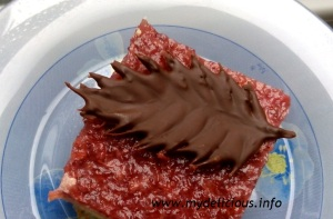 Chocolate leaves
